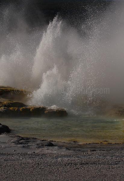 Exploding Springs