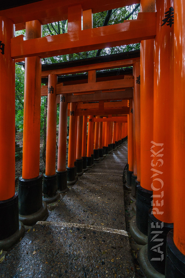 Fushimi Inari-Taisaha Shrine