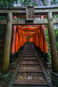 Fushimi Inari-Taisaha Shrine