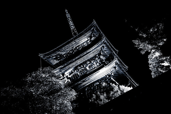 The Ribs Of Kyoto