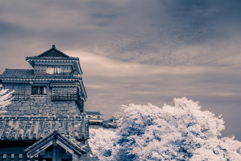 Matsuyama Castle IR