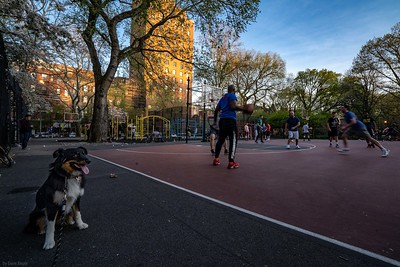 Tompkins Square, NYC