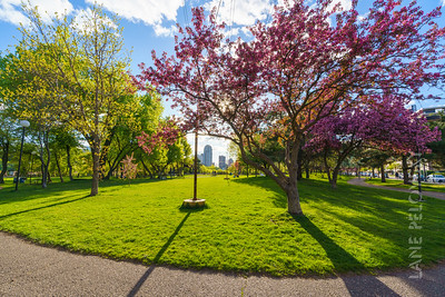 Father Hennepin Park - Spring 7