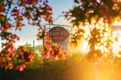 Spring in Minneapolis - Grain Belt Beer 3