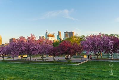 Boom Island Park Spring