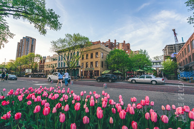 St. Anthony Main - Springtime