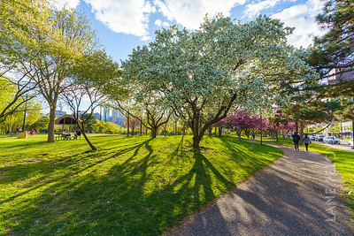 Father Hennepin Park - Spring 6