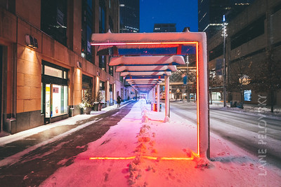 Nicollet Mall - Winter color 2
