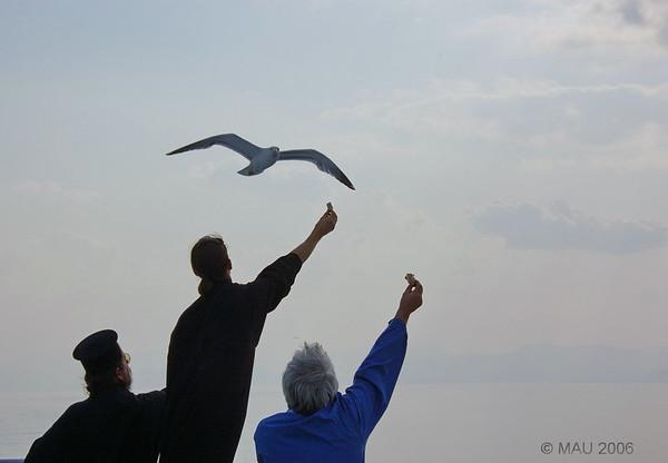 Un día en la isla de Aegina - Grecia