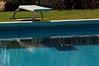 Llevo años tratando de pillarlas bebiendo en la piscina y esto es lo mejor que he conseguido - For years I've been trying to catch them drinking in the pool and this is the best I have achieved