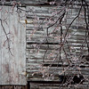 Icy Barn Door