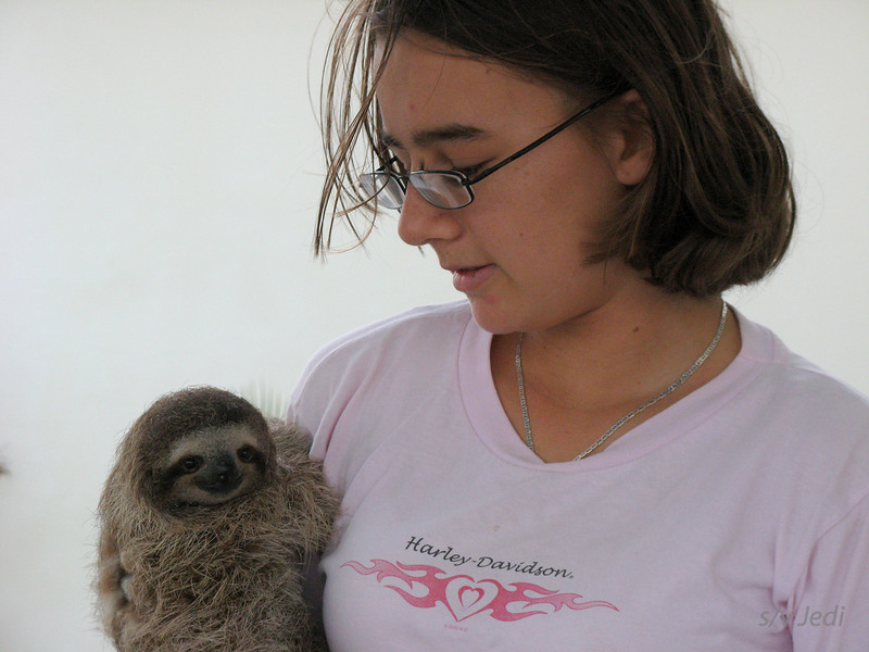 IMG_1435.JPG<br /> Kendall and her pet sloth