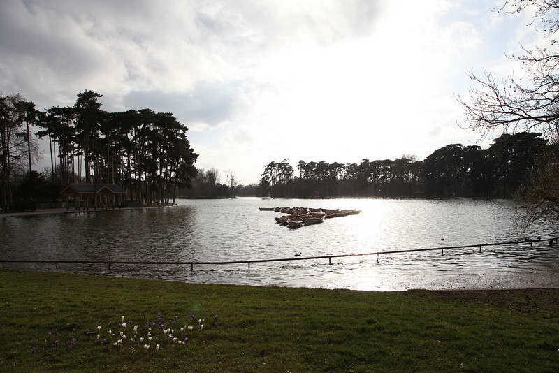 Close to sunset, North tip o the lake at Bois de Boulogne