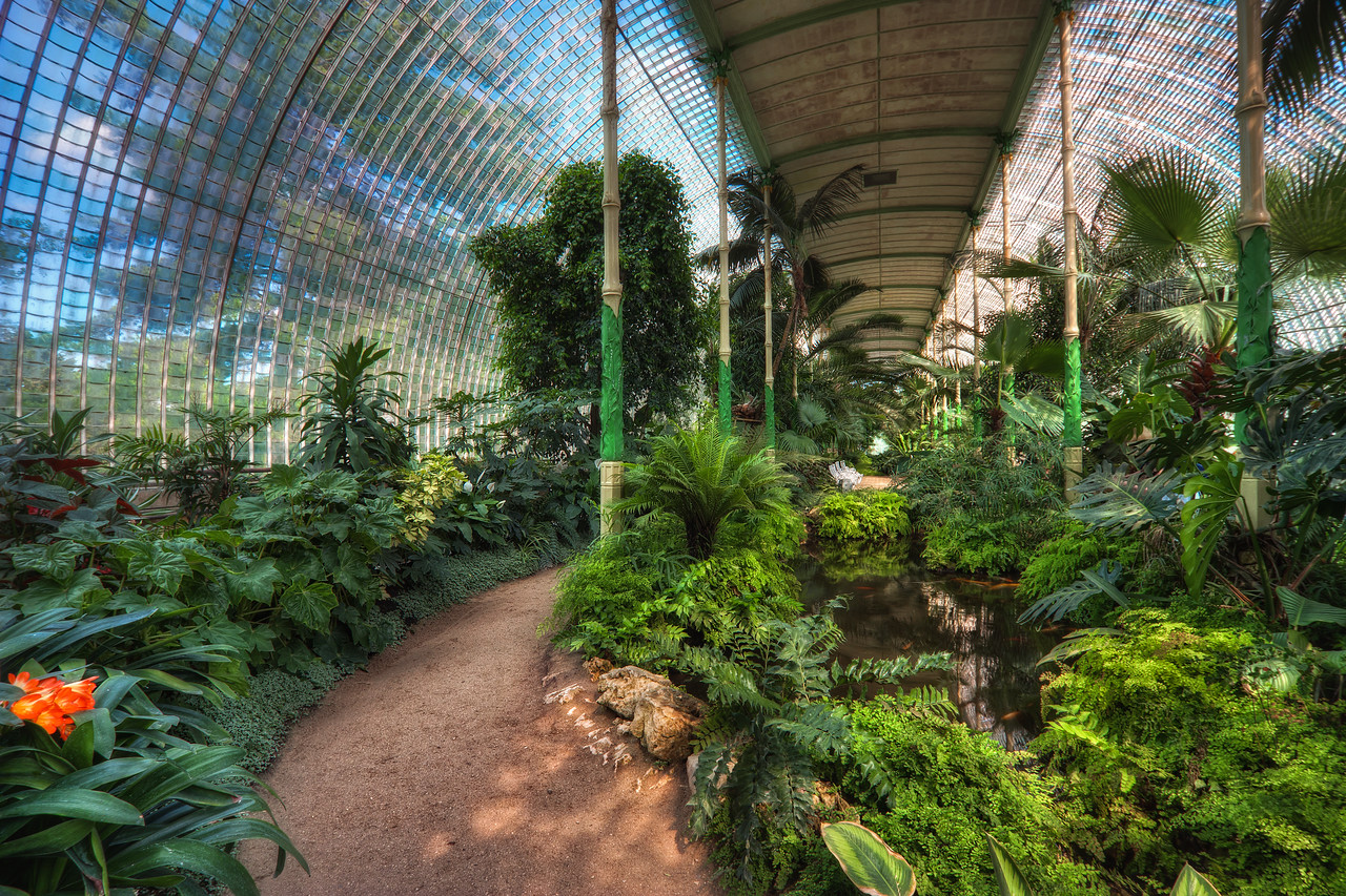 Indoor jungle  There is also this lovely Palm house by the Chateau in Lednice. I have spend only a few minutes in there, as it was were hot in there, but I took some nice shots.  HDR from three shots, taken with Canon 450D with Sigma 10-20mm lens, from a tripod.