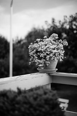 mors blomster