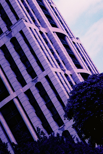 Nikon FT3 - Lomochrome Purple XR 100-400, 35mm Colour Film @ ISO400