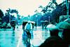 Rainy days, rainy haze