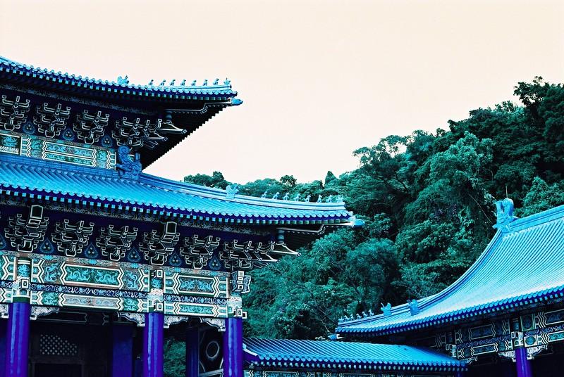 LomoChrome Turquoise XR 100-400 - EI 400