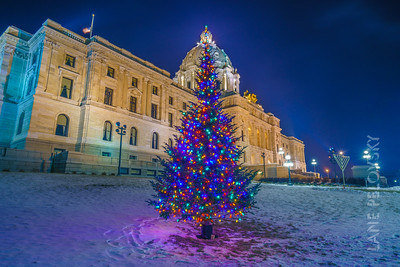 Minnesota State Capitol Christmas Tree