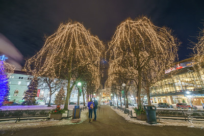 Christmas at Rice Park