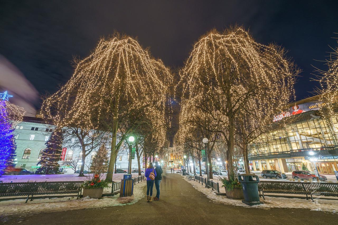 Christmas at Rice Park