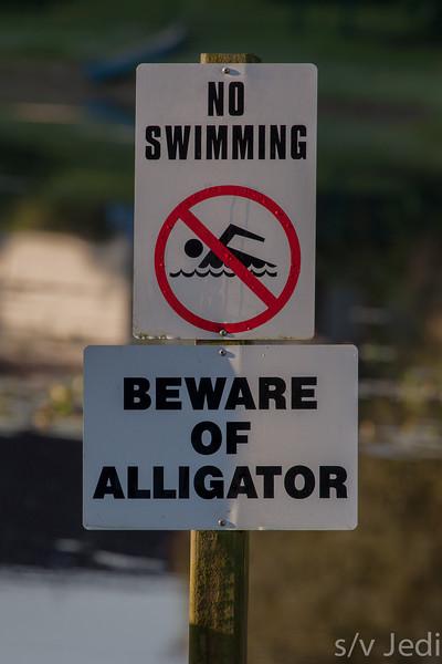 No swimming sign - Beware of alligator, no swimming. Sign at lake in Lakeland, Florida