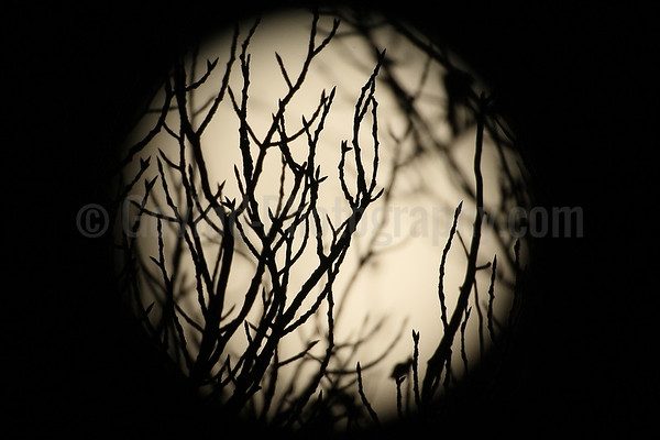 Supermoon abstract