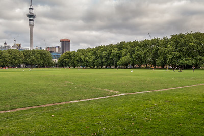 Cricket at Victoria Park