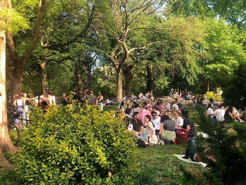Tompkins Park, NYC/lkmd