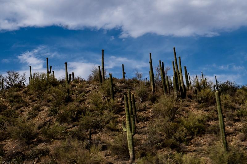 Outside Phoenix, AZ
