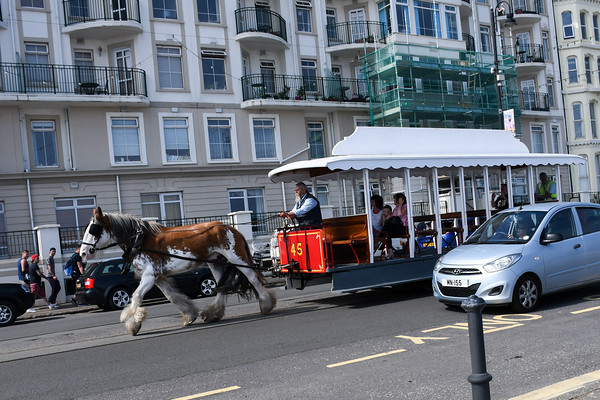 Douglas Horse Tram