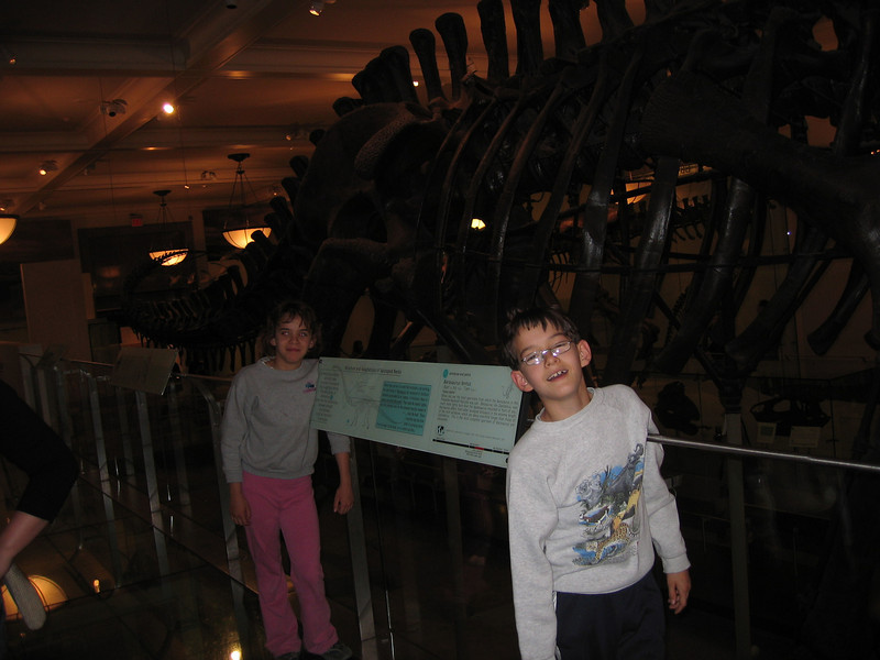 Natural Museum of History
