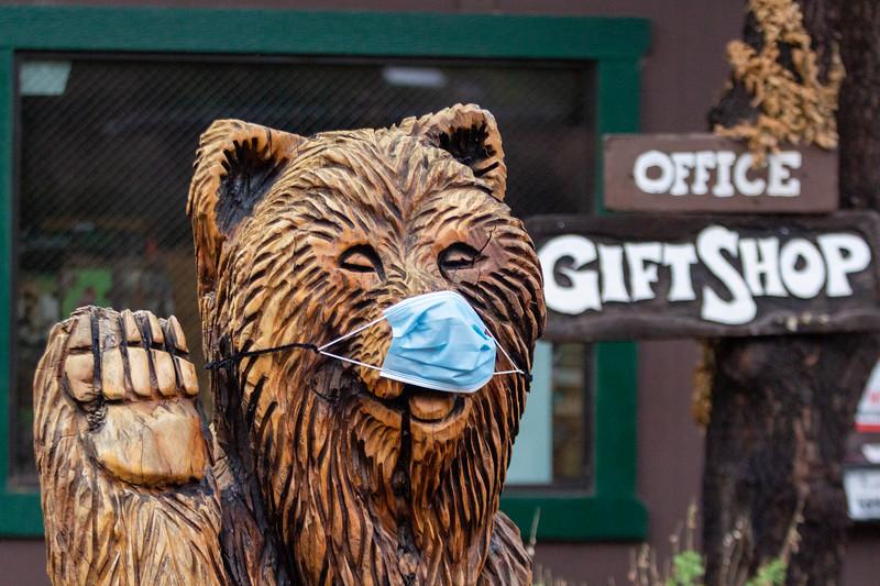 Madera Canyon Gift Shop Bear