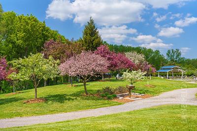Muriel Sahlin Arboretum at Roseville Central Park
