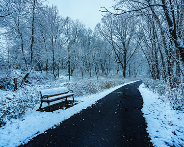 Villa Park - Bench
