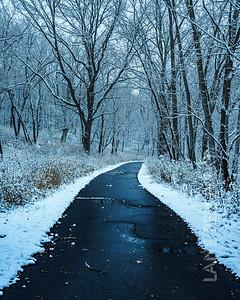 Villa Park - Path