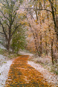 Villa Park: Winter descends on Fall