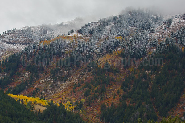 Fall on Mt. Timpanogos