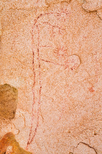 Barrier Canyon Style flowers, pictographs, Utah