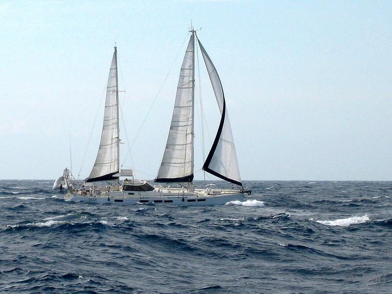 IMG_1083.JPG<br /> Cruising Monjes del Sur.