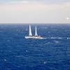 IMG_1101.jpg<br /> Cruising Monjes del Sur.