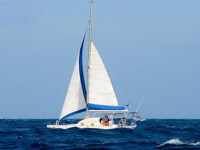 IMG_1087.JPG Cruising Monjes del Sur.