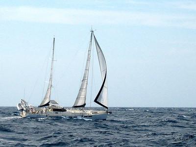 IMG_1084.JPG Cruising Monjes del Sur.