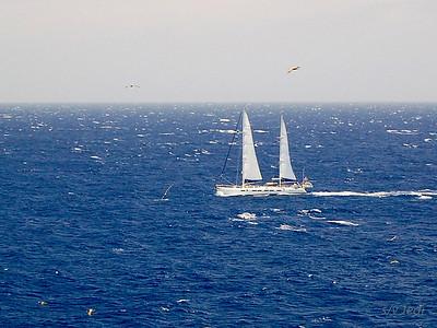 IMG_1100.jpg Cruising Monjes del Sur.