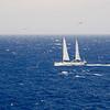IMG_1100.jpg<br /> Cruising Monjes del Sur.