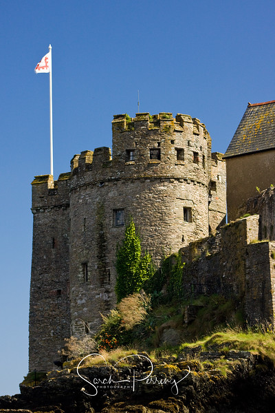 Dartmouth castle at the mouth of the River Dart