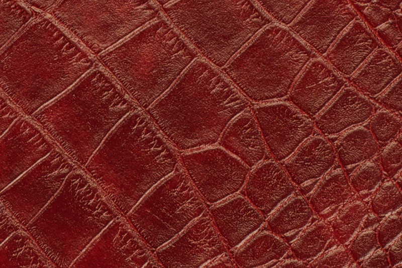 whcc_covers_large_aligator_red