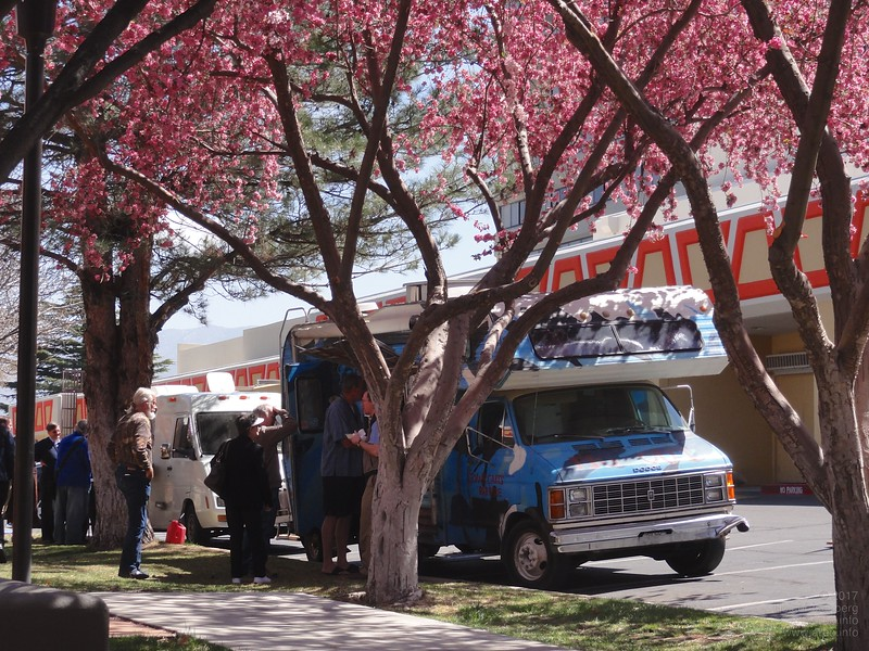 Food trucks offering a variety of excellent lunch dishes for all kinds of diets.
