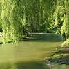 Jardim Inglês