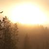 Yellowstone Sunrise
